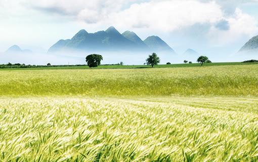 长三角农业网